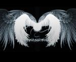 desktop angelic